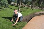 Как выбрать качественный рулонный газон