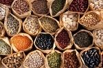 Как выбрать лучшие семена для посевной