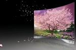 OLED-телевизор