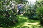Как создать теневой сад на участке