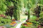 выбор товаров для сада
